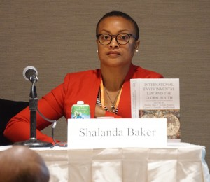 "AALS Section on International Law Chair Shalanda Baker at an International  Environmental Law ""crosscutting program"" at the 2016 AALS Annual Meeting"