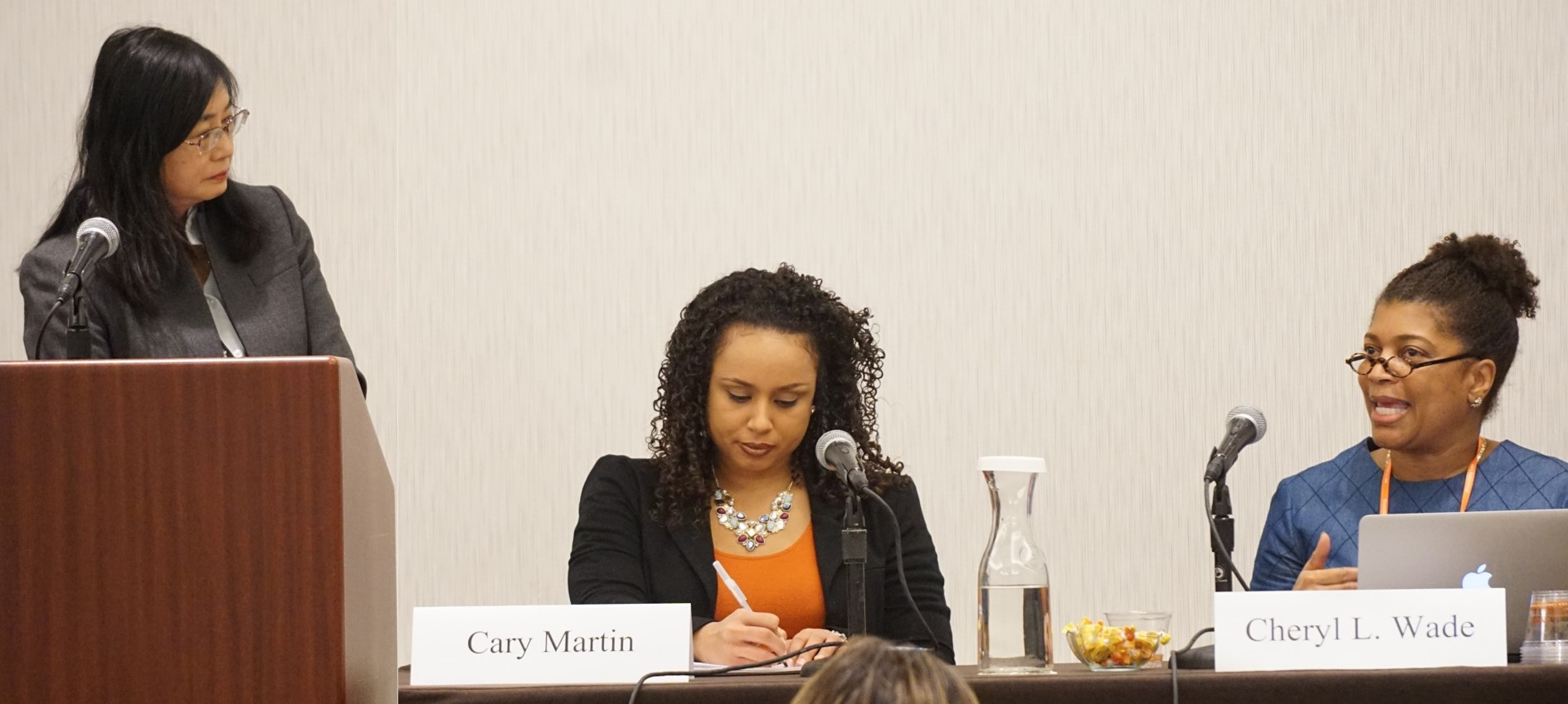 Section on Minority Groups panel at the 2015 AALS Annual Meeting